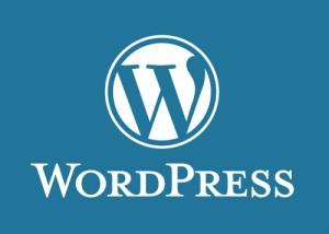 Professionelle Homepage mit WordPress