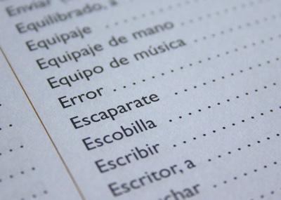Professionelle übersetzung Der Wordpress Homepage Edv Service